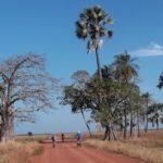 Séjour semi-itinérant au Sénégal