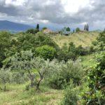 Séjour en Italie :Balade dans le Chianti