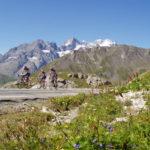 Le Brevet randonneur alpin (BRA) vous attend