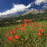 Le Trièves, Territoire Vélo qui mêle sport, nature et culture