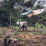 Aventure à vélo, la Bolivie terre de rencontres
